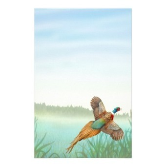 Ringneck Pheasant in Reeds Stationery from Zazzle.com | Artistic Stationery | Scoop.it