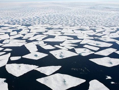 Arctic Climate Change Photos, Arctic Wallpapers -- National Geographic   Sustain Our Earth   Scoop.it
