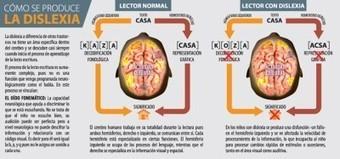 Como se produce la dislexia Infografía   NEE   Scoop.it