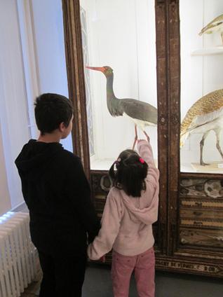 Tutorat collège-maternelle dans un musée | Documentation | Scoop.it