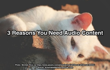 Audio Content Marketing: 5 Actionable Tips | Heidi Cohen | SocialMoMojo Web | Scoop.it