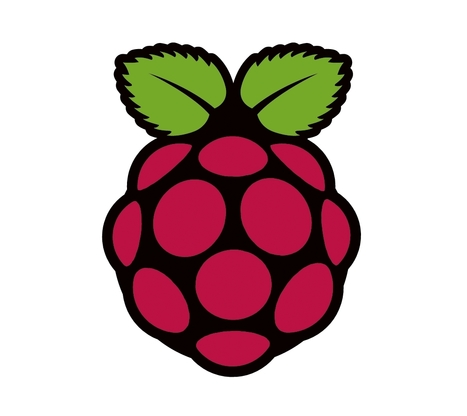 Raspberry Pi prepares industrial compute module for makers - Inquirer | Raspberry Pi | Scoop.it
