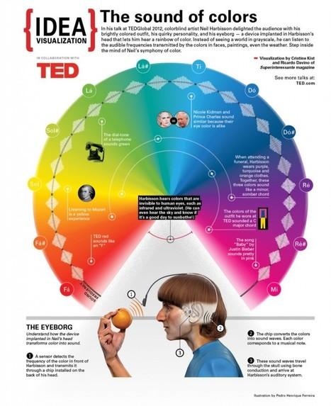 The Eyeborg: Hearing Colors and Our Cyborg Future - Neuroanthropology | Chair et Métal - L'Humanité augmentée | Scoop.it