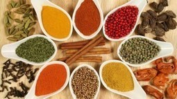 The Ancient Spice Trade Route From Asia to Europe 1500s to 1700s | Indian Ocean | Scoop.it