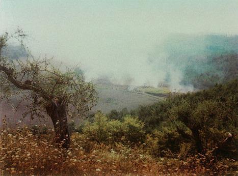 Polaroid's de Andrei Tarkovsky | transversais.org - arte, cultura e política | Scoop.it