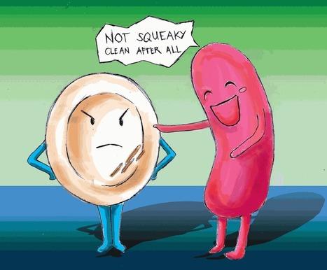 What Is E. coli   Foodborne Illnesses   Scoop.it