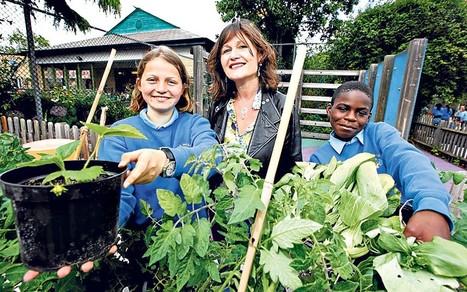 School Gardens: Growing Greener Kids | School Gardening Resources | Scoop.it