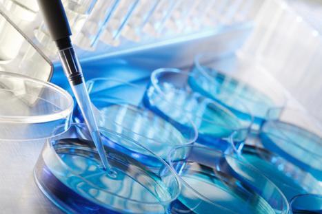Genetics, epigenetics, and the mind-body connection | Neuorplasticiy | Scoop.it