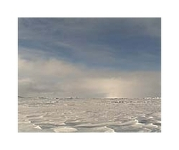 Canada to claim North Pole: minister | Sustain Our Earth | Scoop.it