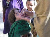 Polio Virus Spreads From Pakistan to Egypt | Virology News | Scoop.it