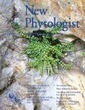 Plant metabolic clusters – from genetics to genomics - Nützmann - 2016 - New Phytologist - Wiley Online Library | Plant Gene Seeker -PGS | Scoop.it