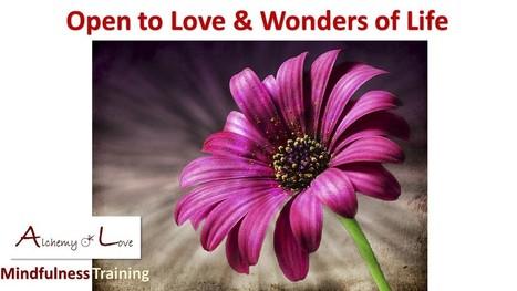 Love Meditation   Self Development and Growth   Scoop.it