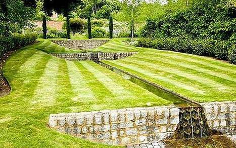 Thorny problems: should I returf my lawn? - Telegraph | Gardening | Scoop.it