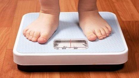 11 dicas para o tratamento da obesidade infantil - Educador de Sucesso - Por Eliane S. Silva | Educação e Educadores | Scoop.it
