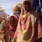 Gérer correctement l'aide alimentaire | World Food News | Scoop.it