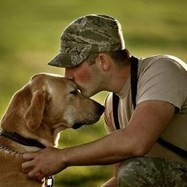K9s for Warriors Helps Pair Service Dogs With Veterans   petMD   Military   Scoop.it