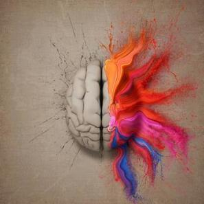 Brain's empathy center identified:Breaking research gives new clues.   Empathy in Health Care   Scoop.it