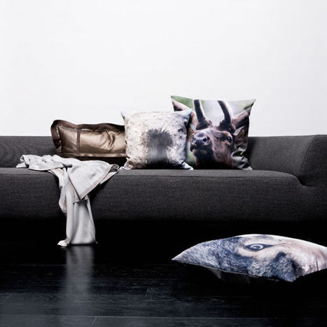 Cushion Spot: Discover the new trend of animal printed cushions | Designer Cushions | Scoop.it