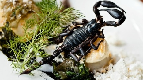 Crickets in Planet Organic, grasshoppers on the Wahaca menu: you might be eating insects sooner than you think | Entomophagy: Edible Insects and the Future of Food | Scoop.it