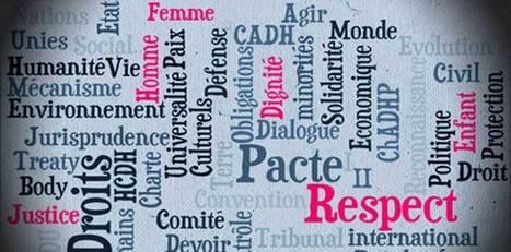 Le MOOC Introduction aux droits de l'homme - Université de Genève est prévu début avril | Libertés Numériques | Scoop.it