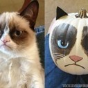 Grumpy cat, walter white, and other pop culture halloween ... - Uproxx | Bay Area Channel | Scoop.it