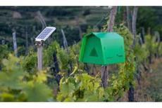 Les pièges connectés font le buzz, Viticulture - Pleinchamp | Images et infos du monde viticole | Scoop.it