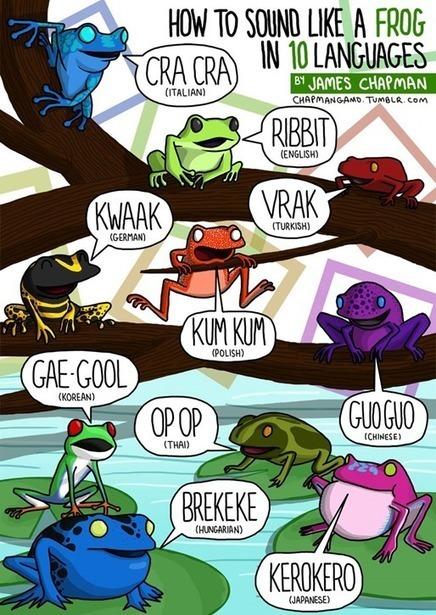 Terminologia etc. » » βρεκεκεκὲξ κοὰξ κοάξ → ribbit e cra cra | Lexicool.com Web Review | Scoop.it