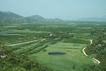 Croatia: Wine, Wheat & More: Seminar October 1, 2012   Research from the NC Agricultural Research Service   Scoop.it