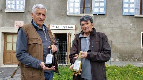 """Terre De Vins: #Savoie Coup de projecteur sur l'association """"Vignes de Tarentaise"""", qui s'attèle """"à donner un second souffle à des ceps plantés entre 600 et 850 mètres d'altitude"""".   IRWT - Vins de Savoie & du Bugey   Scoop.it"""