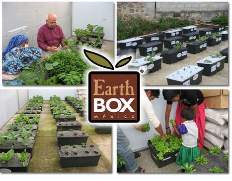 EarthBox ® - México   Revolución sustentable   Scoop.it