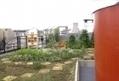 France Bleu | L'élu Vert Christophe Najdovski veut faire pousser une forêt sur les toits de Paris | Agriculture urbaine, architecture et urbanisme durable | Scoop.it