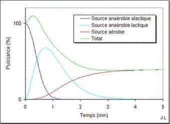 E-SPORTING-COACH - Bio-énergétique | SPORT | Scoop.it