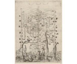 L'arbre généalogique - Images des mathématiques | Histoire Familiale | Scoop.it