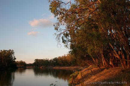 Australian Aboriginal remains - Aboriginal bone repatriation | Museums and Ethics | Scoop.it