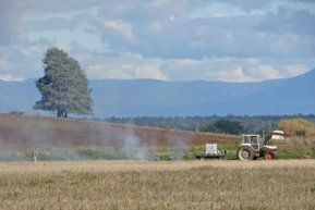 Private landholders urged to reduce bushfire fuel - ABC Online | Fire prevention with grasses | Scoop.it