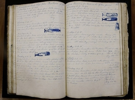 The 19th-century whaling logbooks that could help scientists understand climate change | Progressive, Innovative Approaches to Education | Scoop.it
