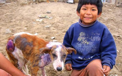 Deaf Boy in Shanty Town Rescues Burned Homeless Dog | This Gives Me Hope | Scoop.it