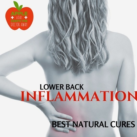 Inflammation in Lower Back: Top Proven Natural Cures - Pain in Lower Back | Back Pain Natural Treatments | Scoop.it