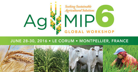 6th AgMIP Global Workshop | AgMIP | Confidences Canopéennes | Scoop.it