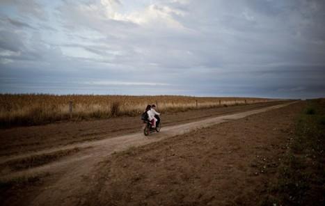 Sojaanbau in Argentinien: Kranker Gewinn   Fundkiste   Scoop.it