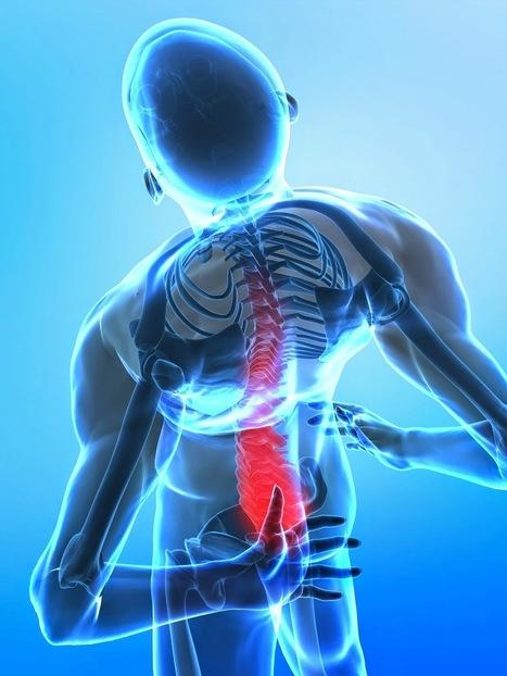 The science of chiropractic manipulatio | Libertyville Wellness Group | Scoop.it