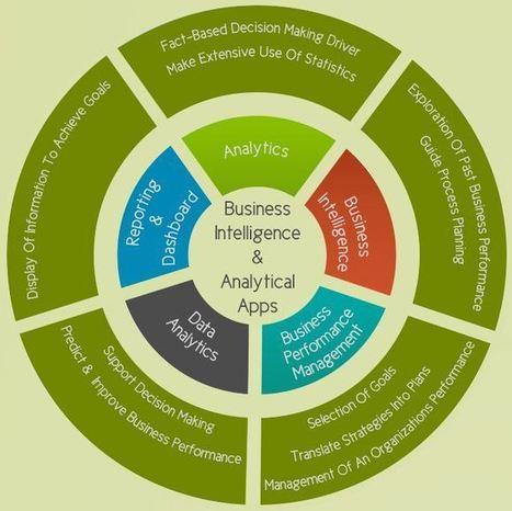 Business Intelligence Software Infographic | digitalassetman | Scoop.it