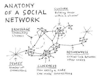 Anatomy of a social network Network | #SNA #dataviz | e-Xploration | Scoop.it