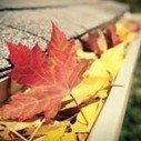Make sure your gutters are clean this Autumn | Capital Facility Services | Scoop.it