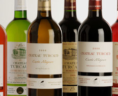 Wine in Cornwall: Mike's Bordeaux Visit | Bordeaux wines for everyone | Scoop.it