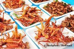 Eating Insects Is Common Around the World | Johnny's interests! | Scoop.it