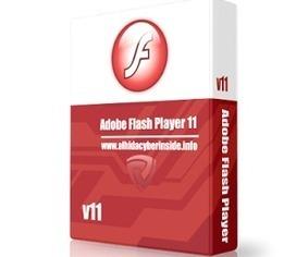 تحميل برنامج فلاش بلاير 2014 الاصدار 14 مجانا للكمبيوتر برابط مباشر | ايجى داون تو داى | تحميل برامج مجانية | Scoop.it