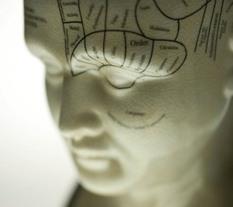Neuroscience: Helping employees through change | Neuroscience | Scoop.it