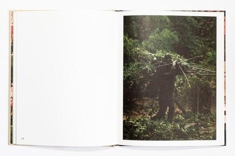 Hesitant Fictions | a photographer's life | Scoop.it