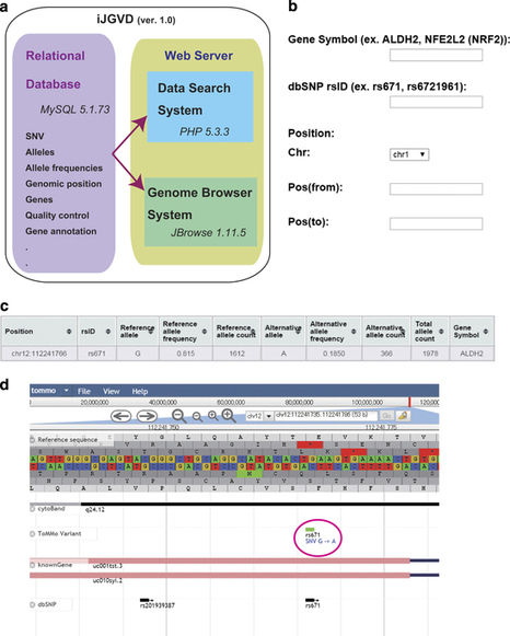 iJGVD: an integrative Japanese genome variation database based on whole-genome sequencing | Databases & Softwares | Scoop.it